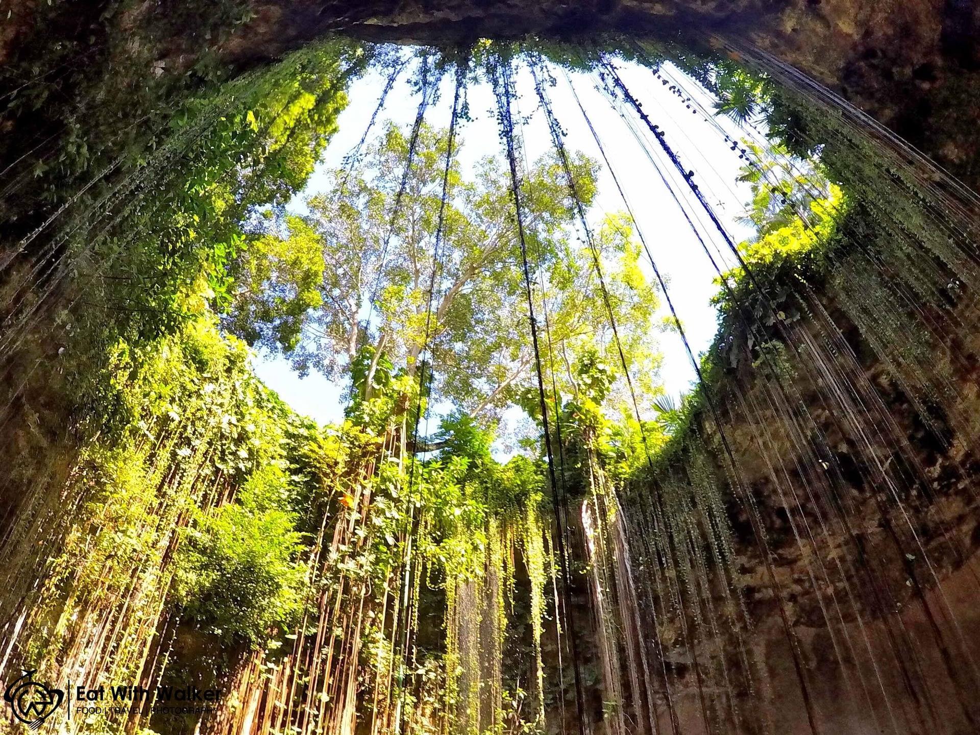 Cenote Ik Kil - Chichen Itza